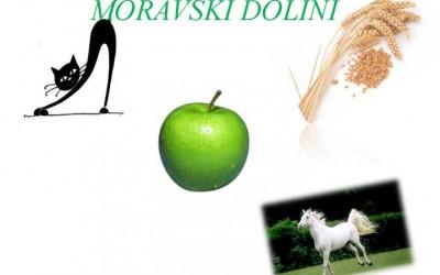 Zeleni turizem v Moravški dolin